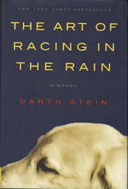 Book Cover Image - The Art of Racing in the Rain