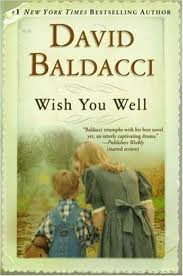 Book Cover Image - Wish You Well