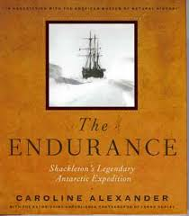 Book Cover Image - The Endurance